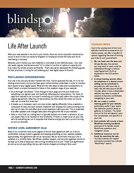 LIFE AFTER LAUNCH